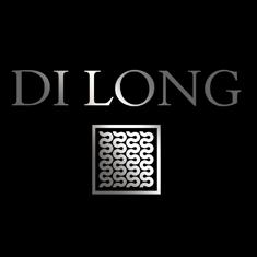 Di Long Inmobiliaria